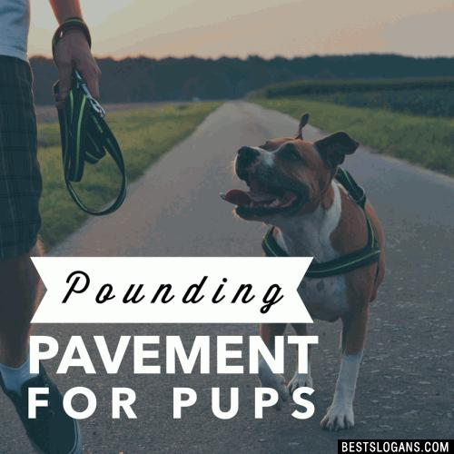 Pounding Pavement for Pups