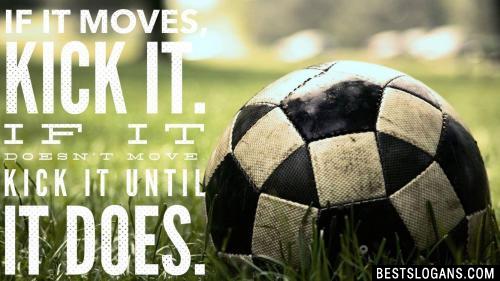 If it moves, kick it. If it doesn't move, kick it until it does.