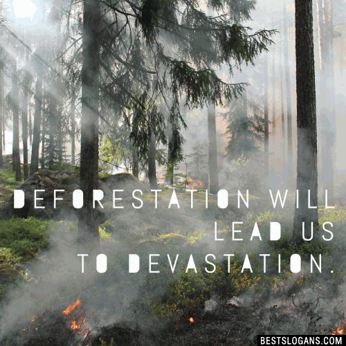 Deforestation will lead us to devastation.