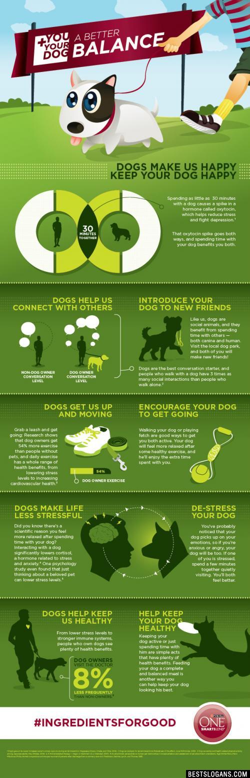 Clever Dog Food Slogans