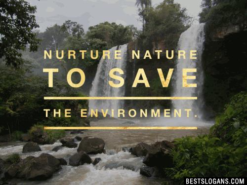 Nurture nature to save the environment.