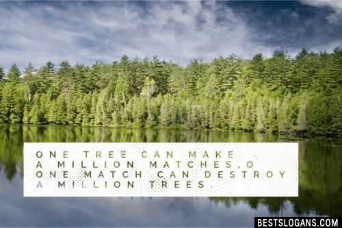 One tree can make a million matches,One match can destroy a million trees.