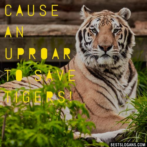 Cause an upROAR to save tigers!