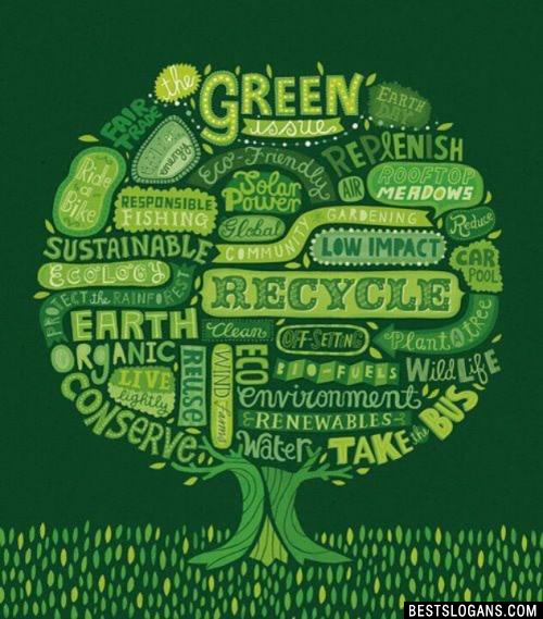 Save trees slogans for kids - Essay Sample