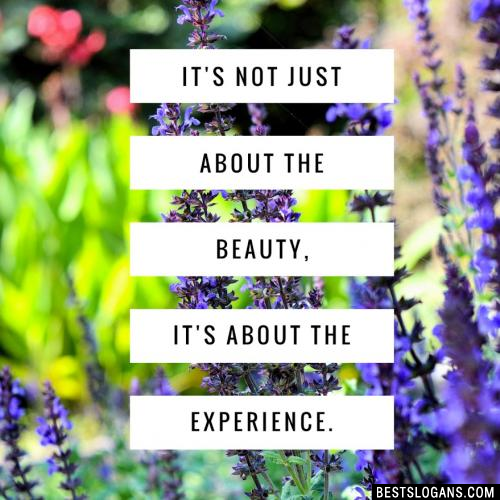 It's not just about the beauty, it's the experience.