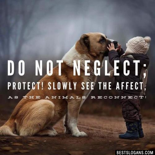 Do not neglect; protect! Slowly see the affect, as the animals reconnect!