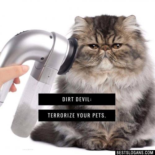Dirt Devil: Terrorize your pets.