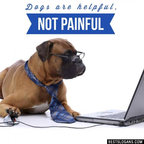 Dogs are helpful, not painful