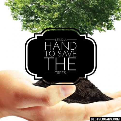 Lend a hand to save the trees.