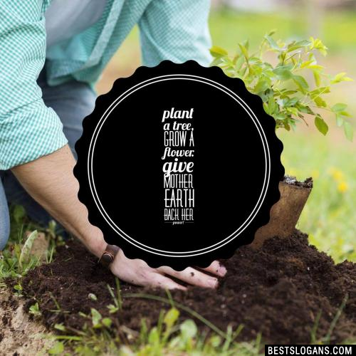 Plant a tree, grow a flower. Give Mother Earth back her power!