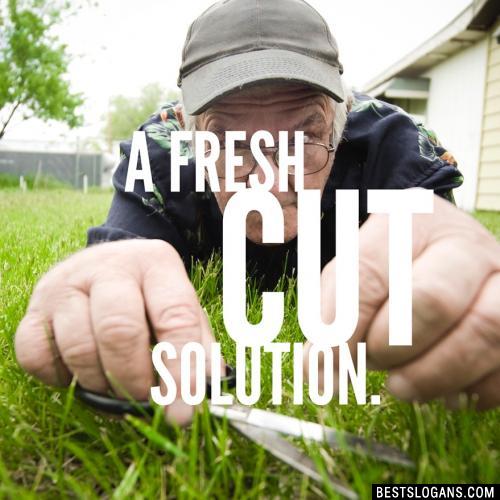 A fresh cut solution.