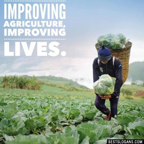 Improving agriculture, improving lives.
