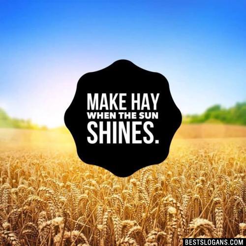 Make hay when the sun shines.