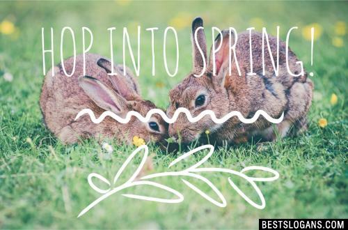 Hop Into Spring