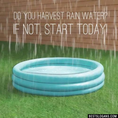Do you harvest rain water? If not, start today!