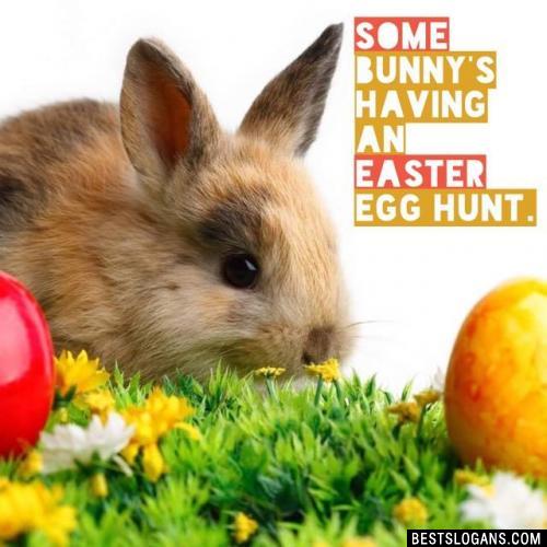 Some bunny's having an Easter egg hunt.