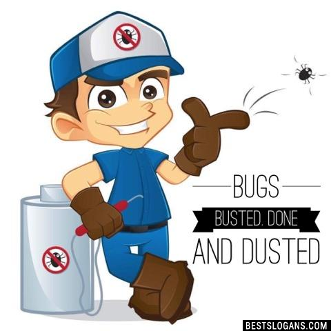 Bugs busted. Done and dusted