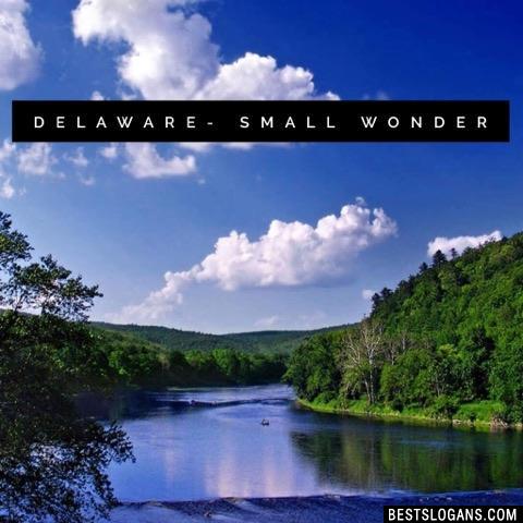 Delaware- Small Wonder