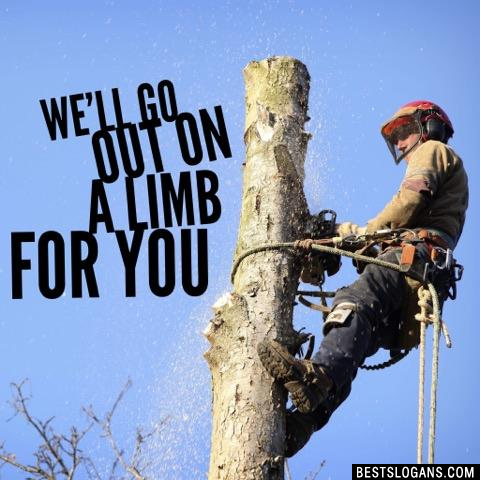 We'll go out on a limb for you
