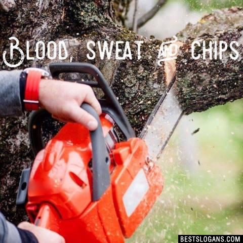 Blood, sweat and chips
