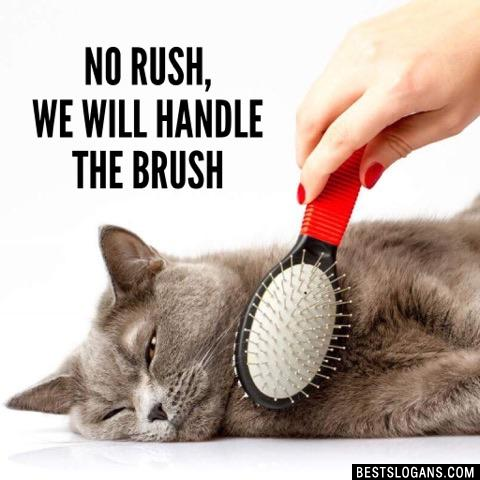 No rush, we will handle the brush