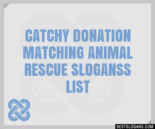 Animal Shelter Sayings