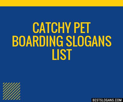 30+ Catchy Pet Boarding Slogans List, Taglines, Phrases